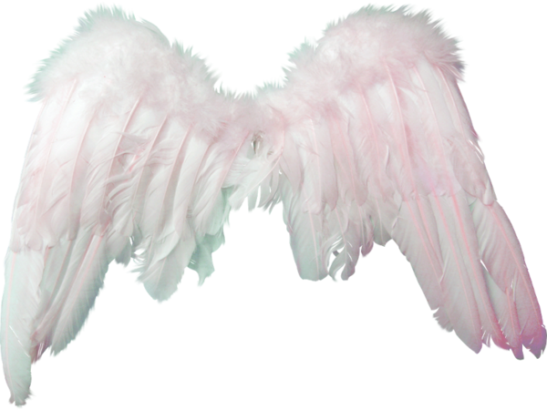 Alas Angel Png 3 Png Image
