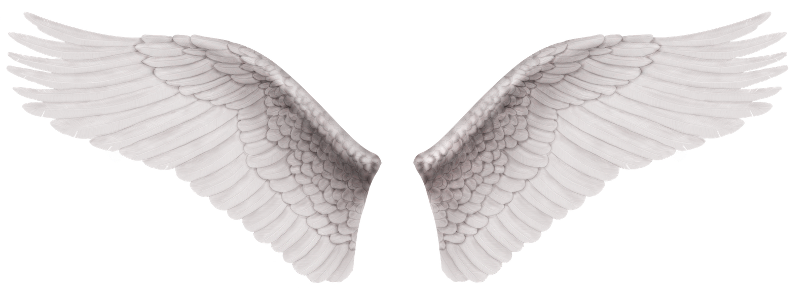 Alas Angel Png 6 Png Image
