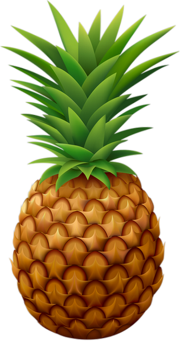 Ananas Dessin Png 4 Png Image