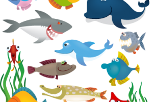 animales acuaticos png 6