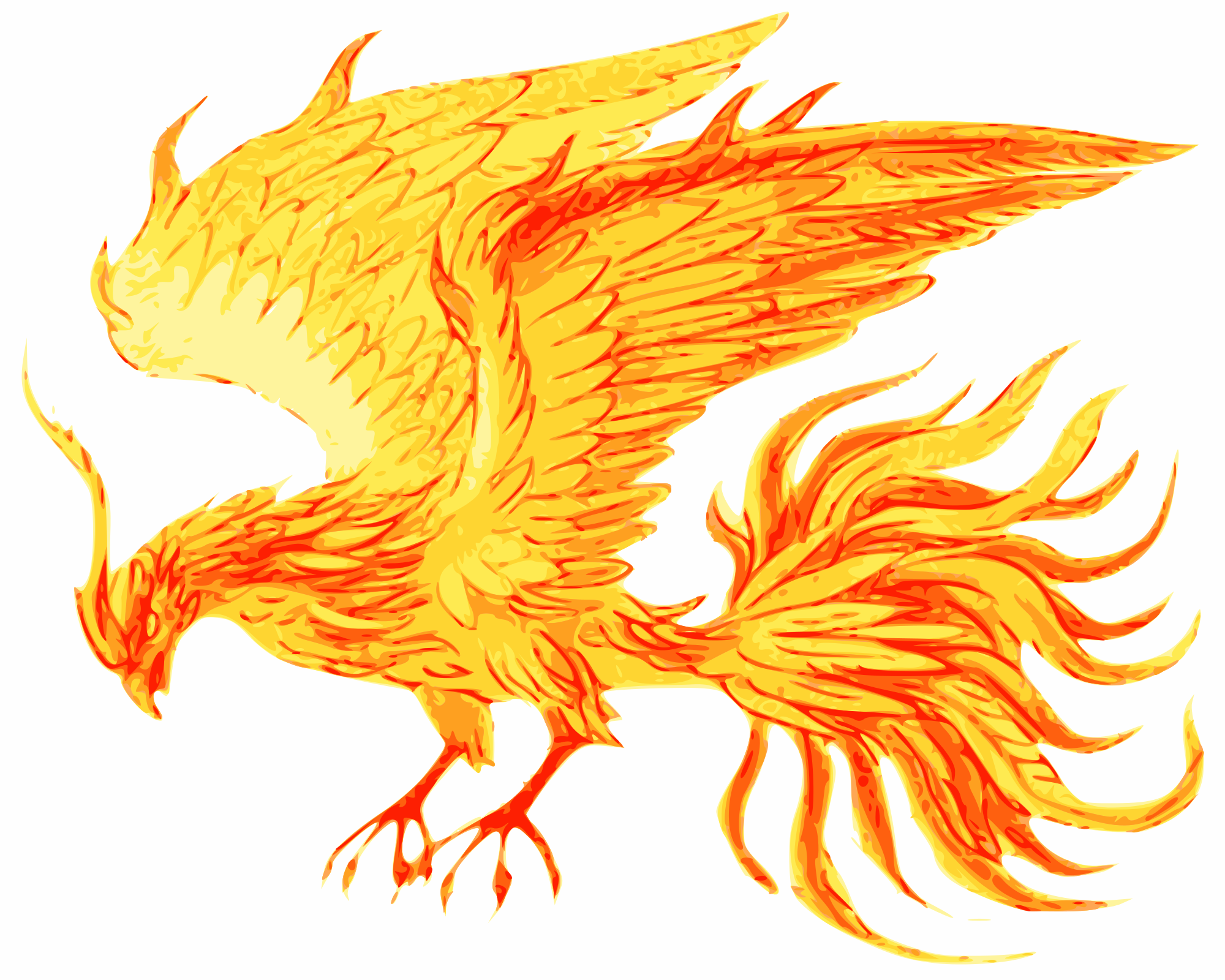 Ave Fenix Png 6 Png Image