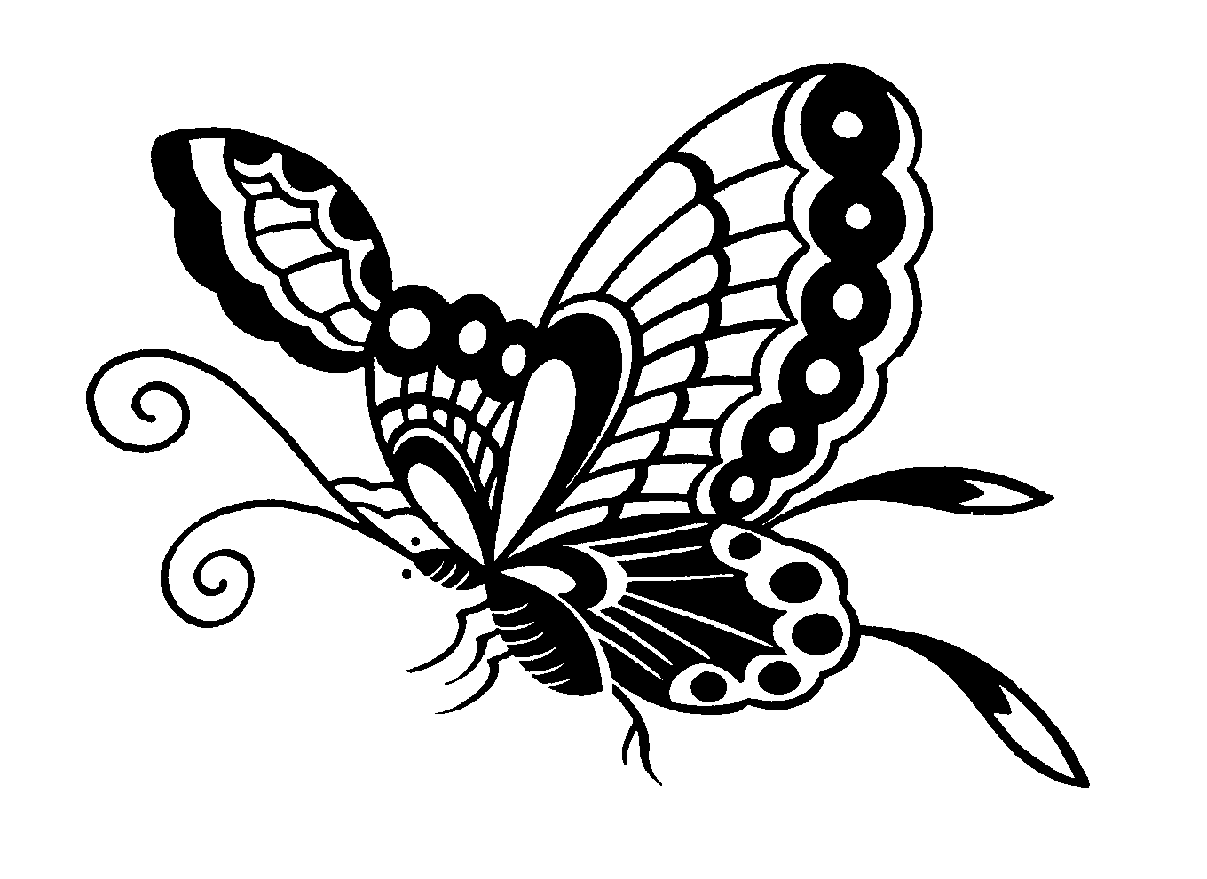 Butterfly Clipart Png Black And White 5 Png Image
