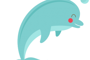 cute dolphin png 1