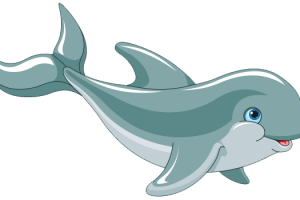 cute dolphin png 2