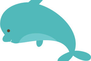 cute dolphin png 4