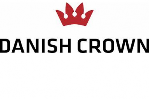 danish crown png 6