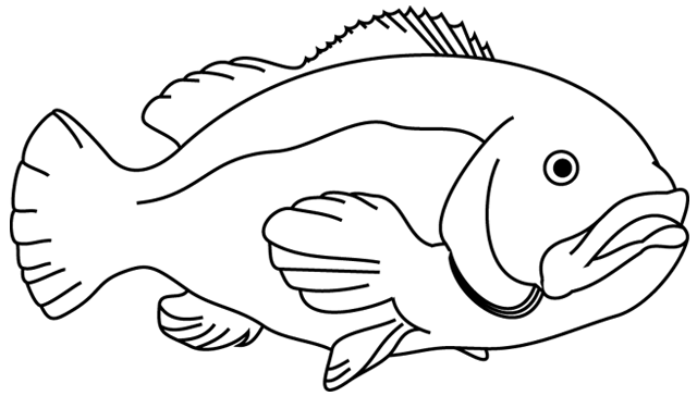 Dessin Poisson Png 4 Png Image