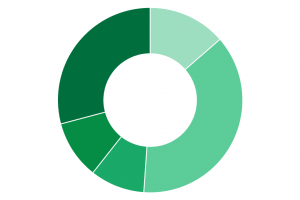 donut chart png 1