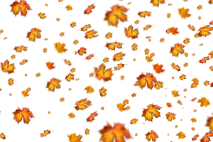 falling autumn leaves png 1