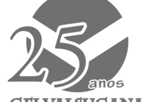 25 anos png