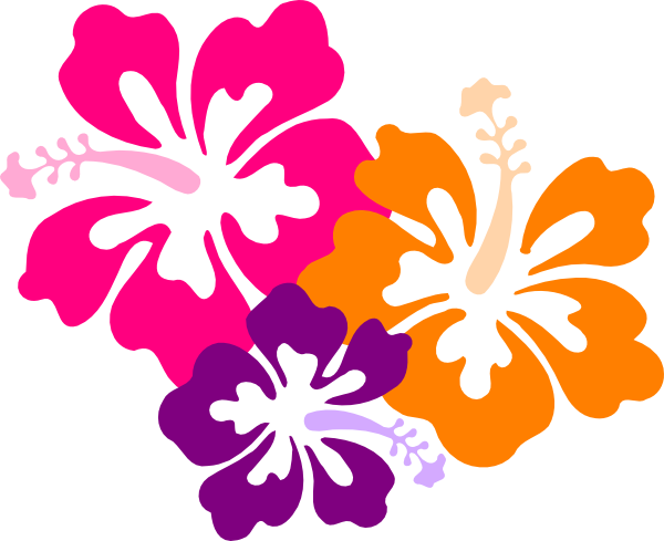 Fiori Hawaii.Fiori Hawaii Png 1 Png Image