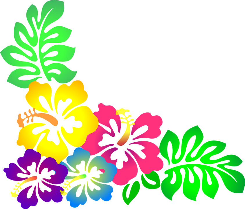 Fiori Hawaii.Fiori Hawaii Png 5 Png Image