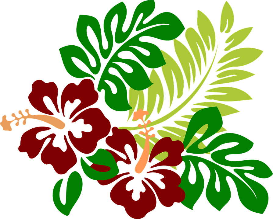 Fiori Hawaii.Fiori Hawaii Png 8 Png Image