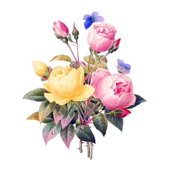 Fiori Vintage.Fiori Vintage Png 3 Png Image