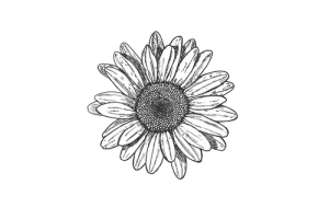 Flores Blanco Y Negro Png 1 Png Image