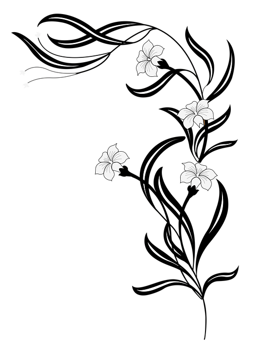 Flores Vector Blanco Y Negro Png 3 Png Image