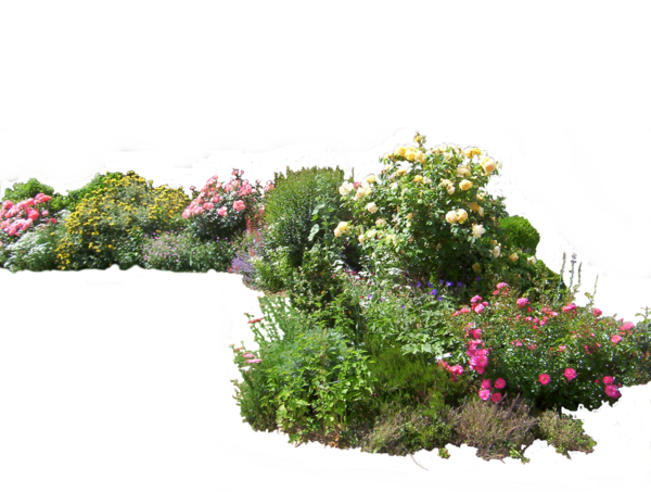 Flower Bed Top View Png Png Image
