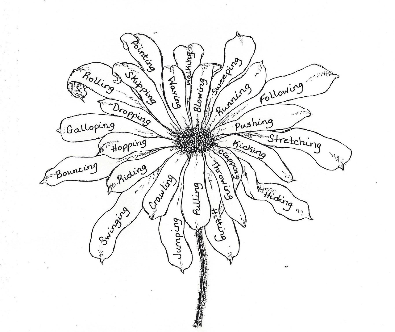 Black And White Sketches Of Flowers Tumblr Dongetrabi Black And