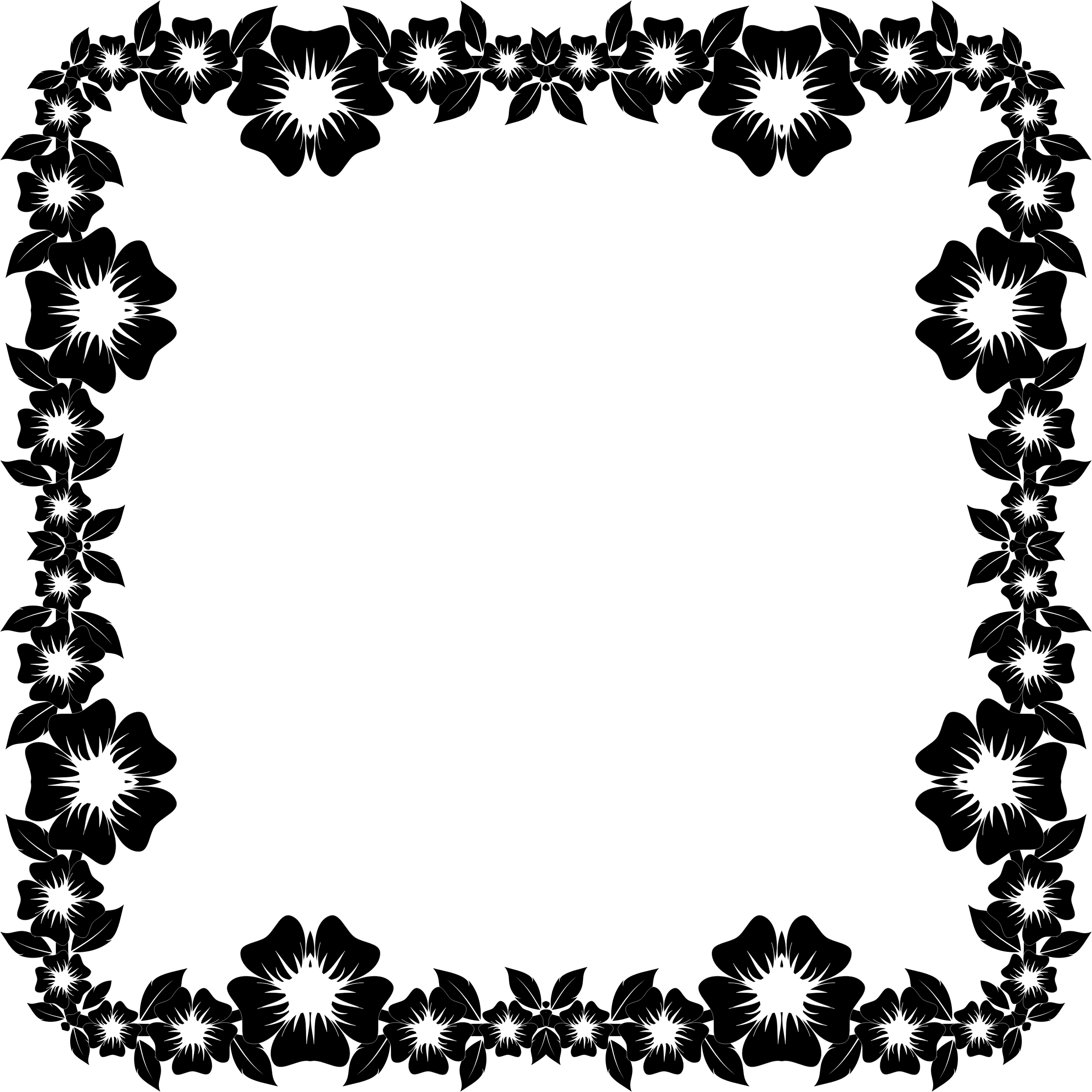 Flower Frame Black And White Png 4 Png Image