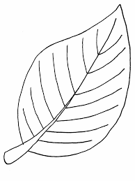 Foglie Disegno Png 1 Png Image