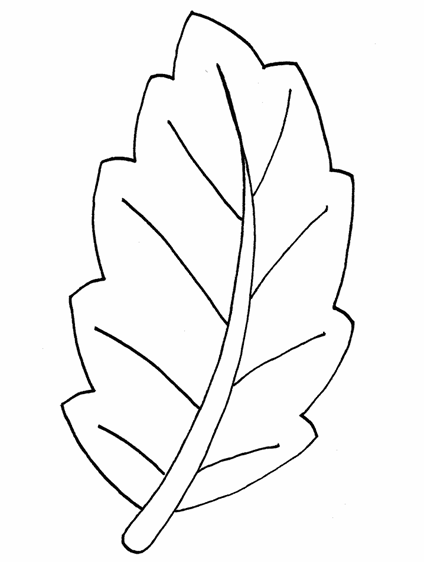 Foglie Disegno Png 5 Png Image