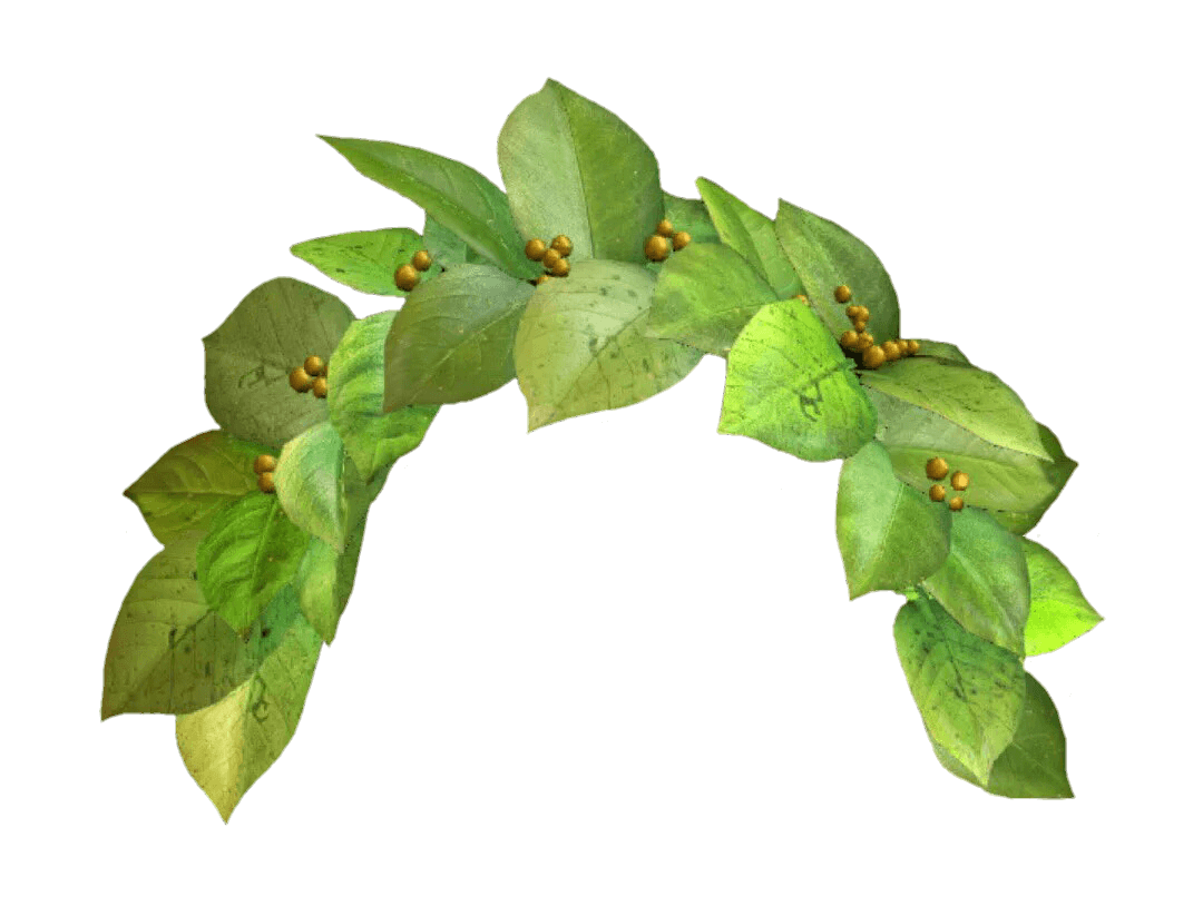 Green Flower Crown Png 1 Png Image