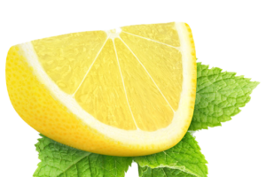 lime wedge png 4