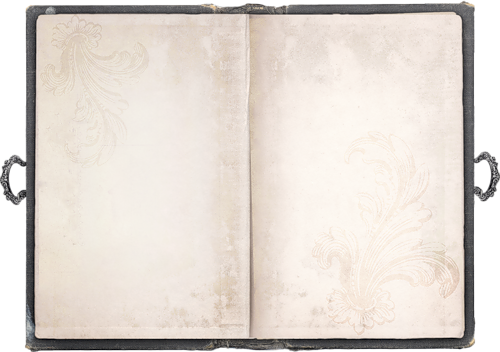 Livre Ouvert Page Blanche Png 6 Png Image