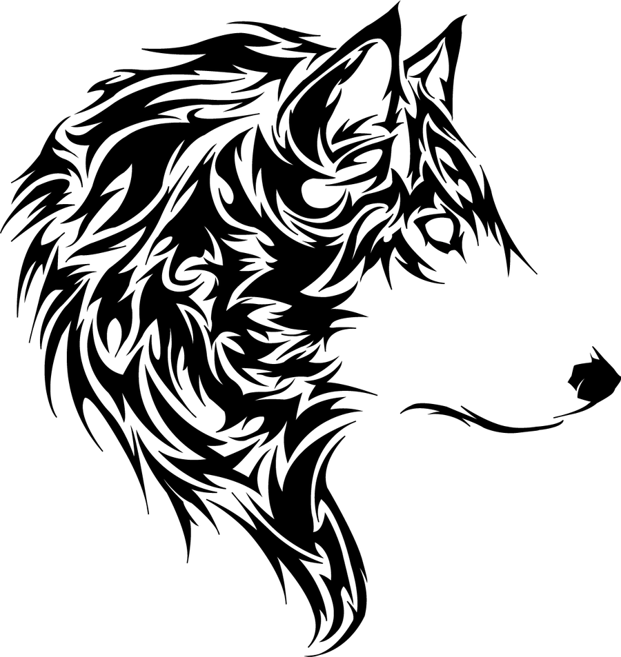 Loup Dessin Png Png Image