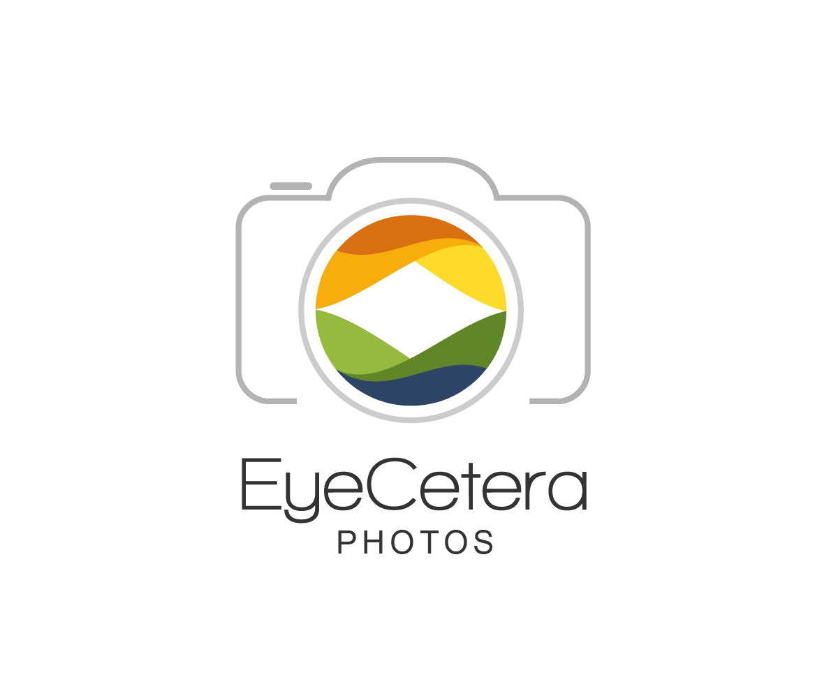 Photography Camera Logo Design Png