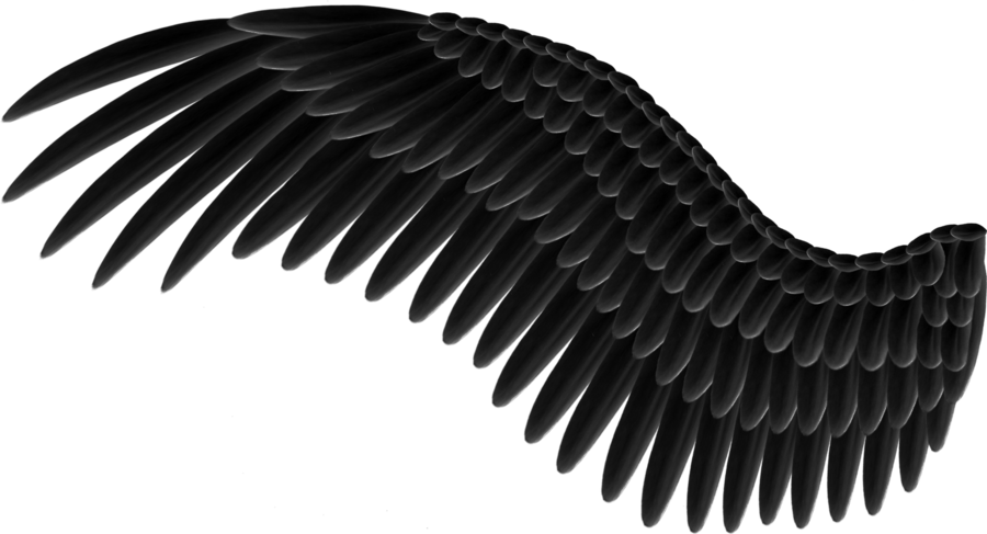 Realistic Demon Wings Png 3 Png Image