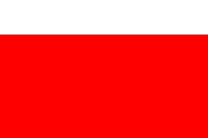 red rectangle png 2