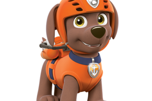 Rocky Paw Patrol Png 2 Png Image
