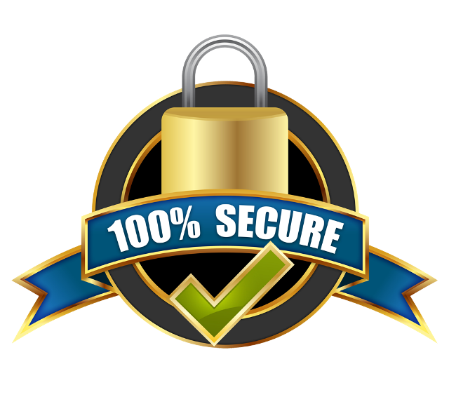 Image result for secure payment png