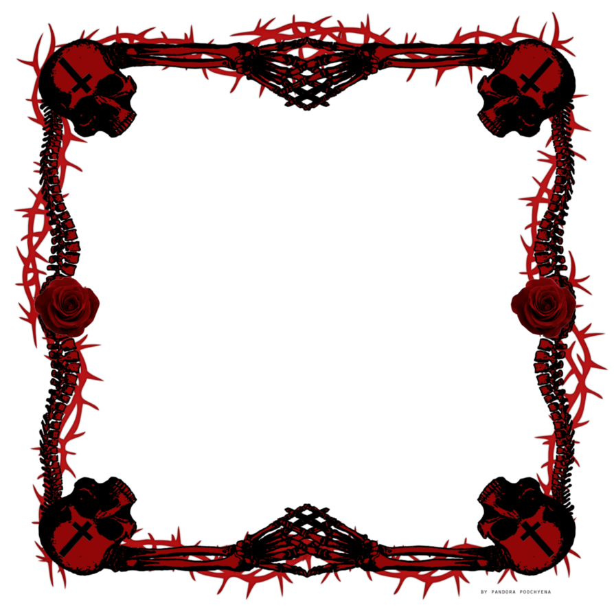 Skull Picture Frames - Picture Frame Ideas
