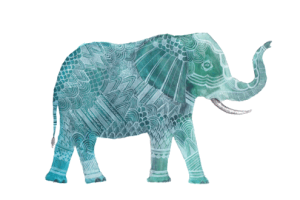 tumblr elephant png 7