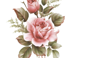 Tumblr Flores Png 1 Png Image