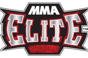 ufc mma png 2