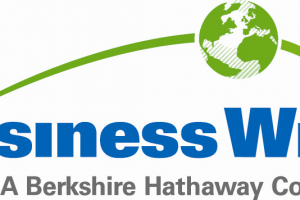 business logo png 1