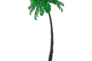 palm background png 2