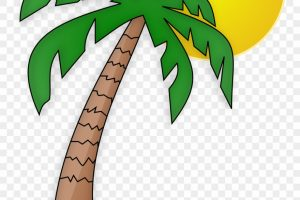palm background png 3