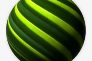 palm frond png 4