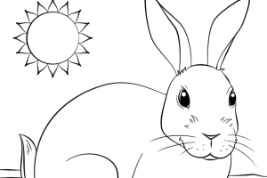 rainbow coloring page png 1