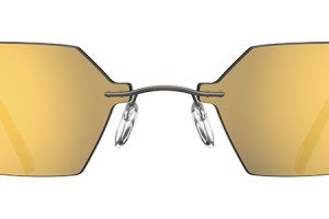 silver rimmed spectacles png