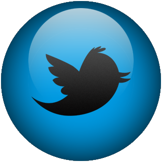 White Twitter Logo Png Transparent Background Png Image