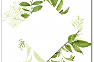 wreath of leaves png 2