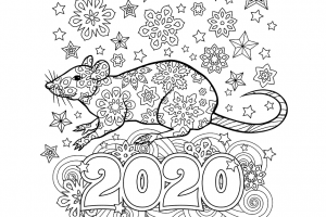 new year card png 2020 4