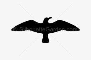 free swift png silhouette