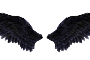 valkeri wing .png 2