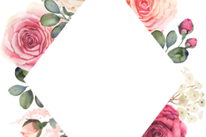 frame template pink png 2
